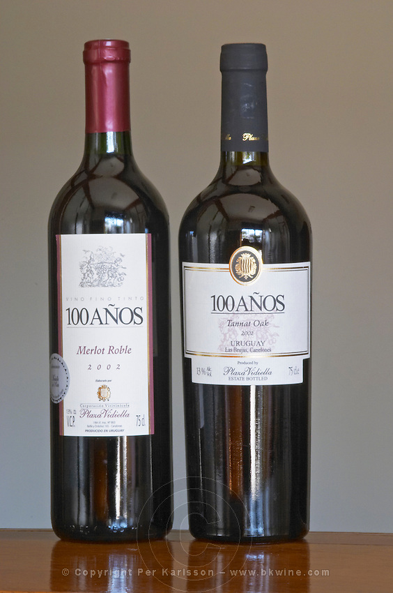 Bottles of 100 Anos (one hundred years) Merlot Roble (oak aged) 2003 and Tannat Oak 2004 Las Brujas Bodega Plaza Vidiella Winery, Las Brujas, Canelones, Uruguay, South America