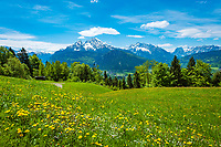 Deutschland, Bayern, Berchtesgadener Land, oberhalb Berchtesgaden: Ausblick vom Gasthof Hochlenzer in die Berchtesgadener Alpen mit Watzmann (links) 2.713 m und Hochkalter 2.607 m (Mitte) und Reiter Alpe - auch Reiter Alm genannt   Germany, Upper Bavaria, Berchtesgadener Land; above Berchtesgaden: view from mountain inn Hochlenzer towards Berchtesgaden Alps with summits Watzmann 2.713 m (left) and Hochkalter 2.607 m (middle) and Reiter Alpe mountain range, also called Reiter Alm