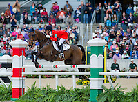 DONNER, ridden by Lynn Symansky (USA), competes during Stadium Jumping at the Rolex 3-Day Event at the Kentucky Horse Park in Lexington, Kentucky on April 28, 2013.