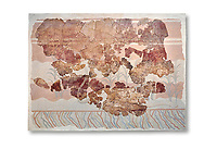 Minoan wall art fresco from the Throne Room of Knossos, 1450-1300 BC. Heraklion Archaeological Museum.  White Background. <br /> <br /> This Minoan fresco depicts griffins and palm trees