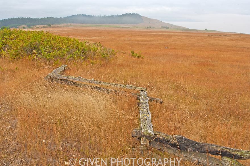 San Juan Island fence and meadow, Washington