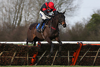 Spirit D'Armor ridden by Aidan Coleman jumps on the way to victory in the Connolly's Red Mills Horsefeed National Hunt Novices' Handicap Hurdle