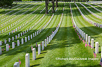 65095-02612 Gravestones at Jefferson Barracks National Cemetery St. Louis, MO