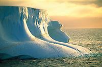 Penguins on a large iceberg near Deception Island in Antarctica.