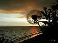 The sun sets as smoke from the Caribou Hills Fire of 2007 makes its way north over Cook Inlet and Kenai, Alaska.