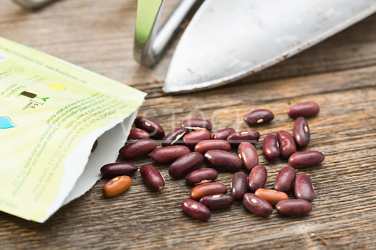 Bean seeds and tools