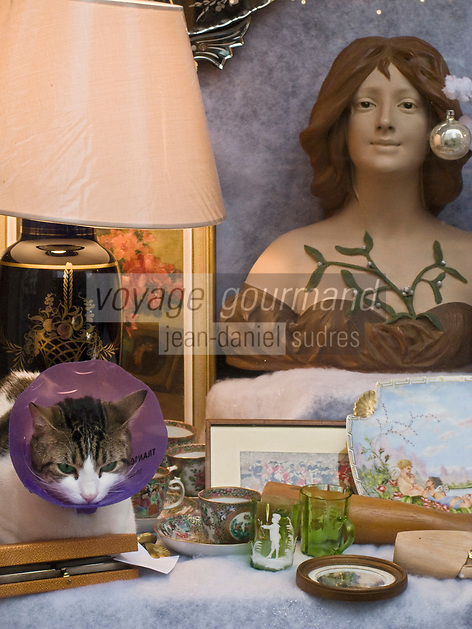 Europe/France/Ile-de-France/75011/Paris : Chat dans la vitrine de Noël d'un antiquaire -  Rue Oberkamp