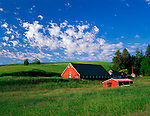 Whitman County, WA      <br /> Weathered red barn and farm buildings settled in the green hills of the Palouse under a summer sky in early morning