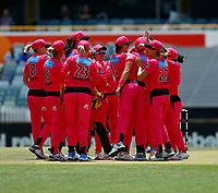 2nd November 2019; Western Australia Cricket Association Ground, Perth, Western Australia, Australia; Womens Big Bash League Cricket, Melbourne Renegades versus Sydney Sixers; Sydney Sixers celebrate the early wicket of Sophie Molineux of the Melbourne Renegades - Editorial Use