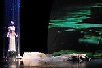 Eau..chorégraphie Carolyn Carlson..avec la complicité des danseurs..musique originale Joby Talbot..images et dispositif Alain Fleischer..lumière Freddy Bonneau, Alain Fleischer..peintures voiles Philippe Tallis..costumes Lina Wu Ta-Jung, Chrystel Zingiro, Manue Piat..textes dits Alan Brooks, Amina Amici..texte projeté Jean-Pierre Siméon..assistante chorégraphique Valentina Romito..conseil artistique Alessandra Vigna, Claire de Zorzi..direction technique Robert Pereira....avec Amina Amici, Jacky Berger, Flavien Bernezet, Yoann Boyer, Alan Brooks, Chinatsu Kosakatani, Riccardo Meneghini, Isida Micani, Chiara Michelini, Yutaka Nakata, Sara Orselli, Sonia Rocha..Lieu : Theatre National de Chaillot..Ville : Paris..Le : 17 03 2010..© Laurent PAILLIER / photosdedanse.com..All rights reserved