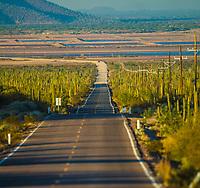 Tastiota, Colorado Desert