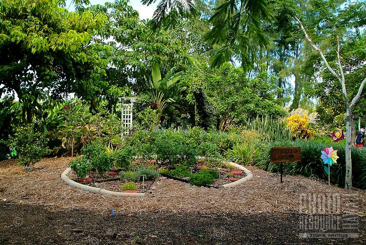 The 30-acre Urban Garden Center contains a variety of displays including an herb garden, a hedge maze, ground cover and turfgrass displays, a hibiscus garden, and an vegetable idea garden.
