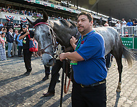 ELMONT, NY - JUNE 10: Ascend #5 is walked out of the winner's circle after winning the Woodford Reserve Manhattan Stakes on Belmont Stakes Day at Belmont Park on June 10, 2017 in Elmont, New York (Photo by Jesse Caris/Eclipse Sportswire/Getty Images)