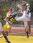 SPEARFISH, SD: SEPTEMBER 2: Receiver Chad Hovasse #81 of Adams State tries to get a handle on a pass while defended by Sam Garcia #42 of Black Hills State during their game Saturday at Lyle Hare Stadium in Spearfish, S.D.   (Photo by Dick Carlson/Inertia)