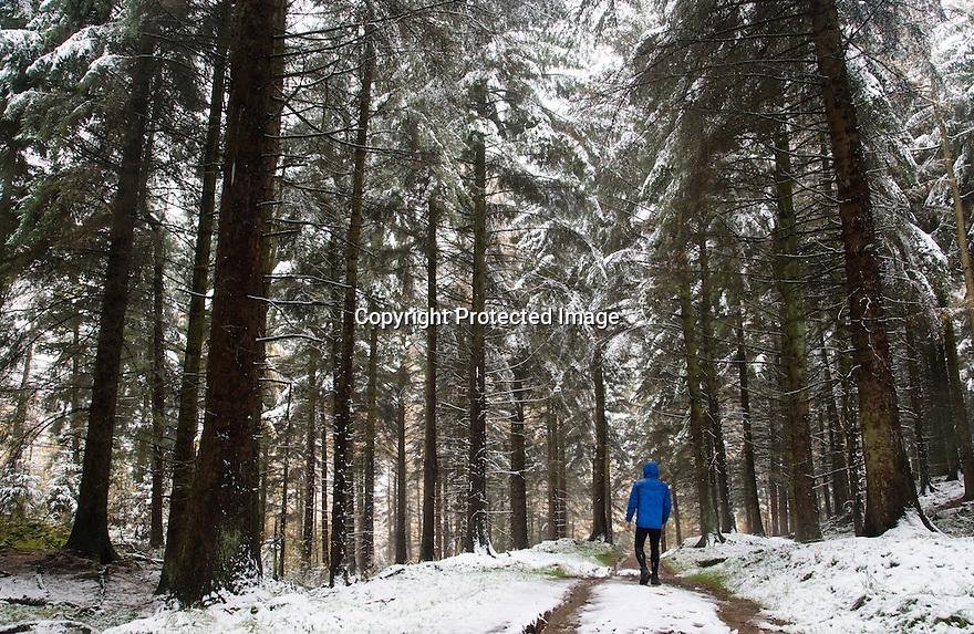 09/11/16<br /> <br /> A walker explores snow covered forest above Ladybower Reservoir in the Derbyshire Peak District, <br /> <br /> All Rights Reserved F Stop Press Ltd. (0)1773 550665   www.fstoppress.com
