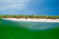 Bright green water and white sand beach with wild grasses, Cayo Jutias, Cuba.