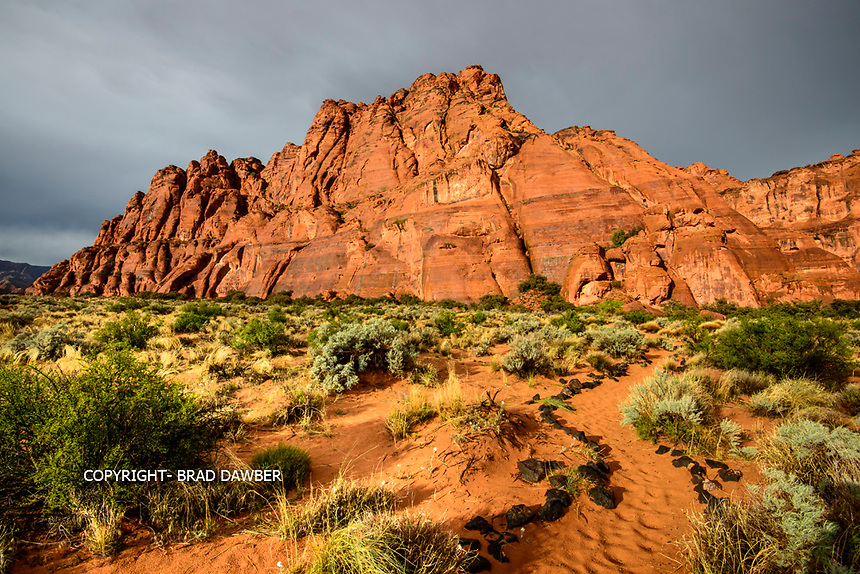 My favorite time to shoot is during a storm, although it certainly has it's challenges. A rainy afternoon looked promising for a rainbow on west facing Snow Canyon. So we went there and got poured on, tried to keep my cameras dry and water off the lens. When it cleared after the rainbow all the red rock is slick and golden just before sunset.