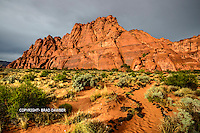 My favorite time to shoot is during a storm, although it certainly has it's challenges. A rainy afternoon looked promising for a rainbow on west facing Snow Canyon. So we went there and got poured on, tried to keep my cameras dry and water off the lens. When it cleared after the rainbow all the red rock is slick and golden just before sunset. SNOW CANYON STATE PARK- IVINS- ST. GEORGE, UTAH