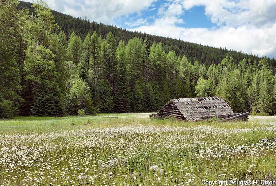 Yaak River Log Cabin Montana Douglas Orton Imaging
