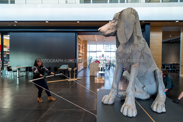 12/17/2014&mdash;Tacoma, WA, USA<br /> <br /> <br /> Ellen Ito (left), an exhibition and collection assistant at Tacoma Art Museum, helps to move &ldquo;Leroy, the Big Pup&rdquo; (2004 by Scott Fife) into position in the main hall of the Tacoma Art Museum (TAM) before opening the museum to the public on Wednesday, December 17th, 2014.<br /> <br /> Photograph by Stuart Isett<br /> &copy;2014 Stuart Isett. All rights reserved.