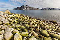 Shoreline boulders along the coast of Fuglesongen island, Svalbard