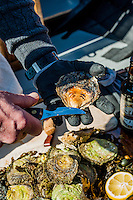 Fisherman Per Karlsson runs oyster safaris in Grebbestad and shows off how to shuck an oyster.
