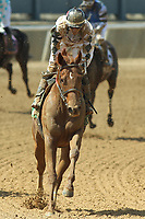 HOT SPRINGS, AR - APRIL 15: After the running of the 5th race at Oaklawn Park on April 15, 2017 in Hot Springs, Arkansas. (Photo by Justin Manning/Eclipse Sportswire/Getty Images)