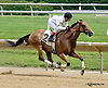 Distiller winning at Delaware Park racetrack on 6/26/14