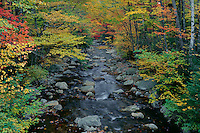 West Branch Mad River<br /> Waterville Valley<br /> White Mountain National Forest<br /> Grafton County, New Hampshire, New England