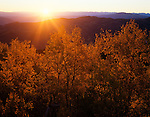 Autumn sunrise and aspens, Uinta Range from Wasatch Mountains