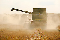 "Europa Deutschland DEU Mecklenburg-Vorpommern, John Deere Maehdrescher ernten Getreide , Weizen wird fuer Ethanolherstellung genutzt -  Landwirtschaft xagndaz | .Europe Germany GER , harvest wheat with John Deere combined harvester .  -  agriculture .| [ copyright (c) Joerg Boethling / agenda , Veroeffentlichung nur gegen Honorar und Belegexemplar an / publication only with royalties and copy to:  agenda PG   Rothestr. 66   Germany D-22765 Hamburg   ph. ++49 40 391 907 14   e-mail: boethling@agenda-fototext.de   www.agenda-fototext.de   Bank: Hamburger Sparkasse  BLZ 200 505 50  Kto. 1281 120 178   IBAN: DE96 2005 0550 1281 1201 78   BIC: ""HASPDEHH"" ,  WEITERE MOTIVE ZU DIESEM THEMA SIND VORHANDEN!! MORE PICTURES ON THIS SUBJECT AVAILABLE!! ] [#0,26,121#]"