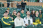 Fans watch as the duck descends from the sky at the University of Oregon's Fiesta Bowl pep rally on wednesday Jan. 2, 2012. ..Tribune Photo: Mg Williams ..1-2-13, DUCKS, U OF O, Fiesta bowl, pep rally, Tostitos Fiesta Bowl, University of Oregon, Phoenix, Saltwater Fields