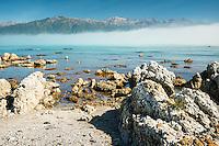 Rocky coast of Kaikoura coastline with Kaikouras mountains in background, Kaikoura, Marlborough Region, South Island, East Coast, New Zealand