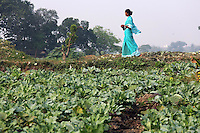 A woman in a turquoise dress walks past fields on the outskirts of Kolkata.<br /> <br /> To license this image, please contact the National Geographic Creative Collection:<br /> <br /> Image ID: 1925832  <br />  <br /> Email: natgeocreative@ngs.org<br /> <br /> Telephone: 202 857 7537 / Toll Free 800 434 2244<br /> <br /> National Geographic Creative<br /> 1145 17th St NW, Washington DC 20036