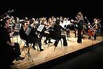 Drogheda Orchestral Collective Concert 2013