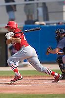 Joseph Hage (23) of the Johnson City Cardinals follows through on his swing at Dan Daniels Park in Danville, VA, Sunday July 27, 2008.