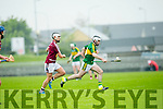 In Action Kerry's Jack Goulding in the  Leinster Senior Hurling Championship Round Robin Group, Round 2,  Kerry V Westmeath    on Saturday at Tralee's Austin Stack Park on Saturday