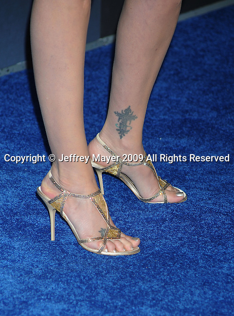 """HOLLYWOOD, CA. - December 16: Virginia Madsen attends the Los Angeles premiere of """"Avatar"""" at Grauman's Chinese Theatre on December 16, 2009 in Hollywood, California."""