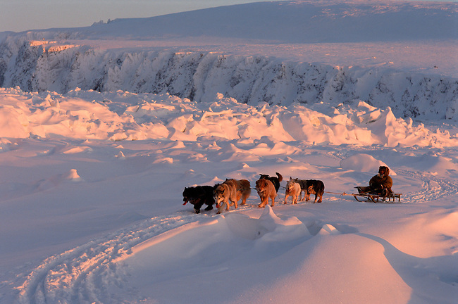 Geora Eymetitin, a Chukchi, drives his dog team by a pressure ridge near Cape Dezhnev.Chukotka, Siberia.