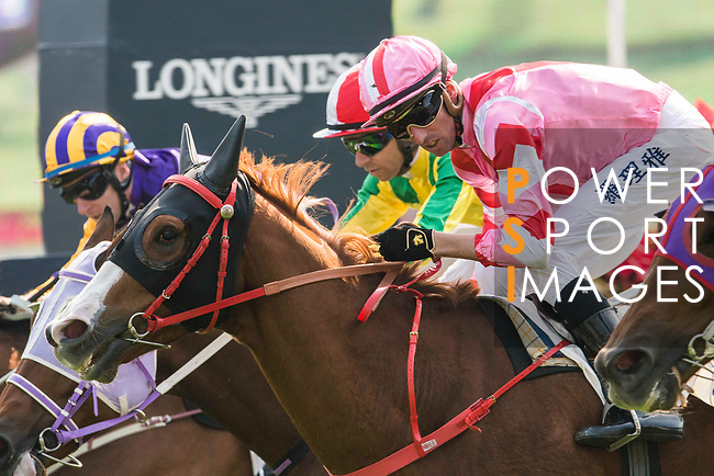 Jockey Nash Rawiller riding Simply Brilliant competes in the Race 2, Able Friend Handicap, during the Longines Hong Kong International Races at Sha Tin Racecourse on December 10 2017, in Hong Kong, Hong Kong. Photo by Victor Fraile / Power Sport Images