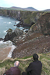 SLEA HEAD ROAD COLLAPSE 9-4-07. A massive cliff collapsed beside the main Slea Head road on the Dingle Penninsula on Monday and large fissures appeared on the road. The road is now closed to traffic and great concern is being expressed about the ramaining roadway.<br /> Picture shows local residents padraig O'Mathuna and Miceal De Mordha observing the damage on Monday morning.<br /> <br /> Picture by Don MacMonagle
