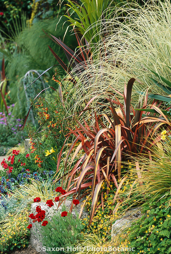 Modern mixed border with Phormium 'Guardsman' (New Zealand Flax) at public arboretum