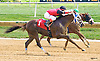 Love the Beat winning at Delaware Park on 8/20/16