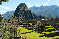 """The exact reason for building Machu Picchu is still not known. Specialists have concluded that it might have been some sort of a religious sanctuary, perhaps also a place where the rich Incas had retreated (but before the arrival of the Spaniards). One of the World's New Seven Wonders of the World, the """"Old Peak"""" has become an icon of Peru."""