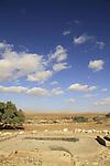 Israel, Negev, Beer Milka near Nitzana