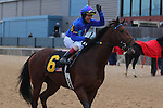 January 18, 2016: Jockey Jon Court aboard #6 Discreetness celebrates after winning the Smarty Jones Stakes at Oaklawn Park in Hot Springs, AR. Justin Manning/ESW/CSM