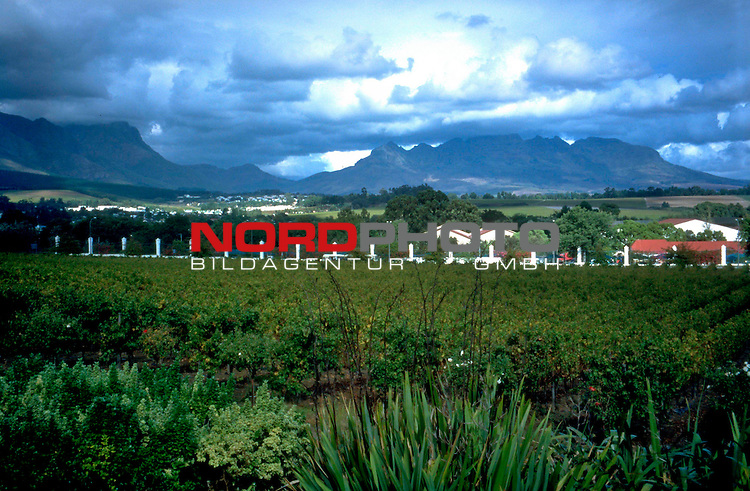 Fussball Weltmeisterschaft 2010  Suedafrika<br /> <br /> Die Weinberge im Hinterland von Kapstadt ( Cape Town ) bei Paarl.<br /> <br /> Foto &copy; nph (  nordphoto  )<br />  *** Local Caption *** <br /> <br /> Fotos sind ohne vorherigen schriftliche Zustimmung ausschliesslich f&uuml;r redaktionelle Publikationszwecke zu verwenden.<br /> Auf Anfrage in hoeherer Qualitaet/Aufloesung