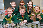 The tradition of making St Bridget's Crosses is very much alive in Firies National School where pupils made hundreds to sell at local masses. .Front L-R James O'Leary, Tomás Scott and Mileta Formalyte. .Back L-R Chloe O'Connor, Kimberley O'Brien and Olivia Goulding.