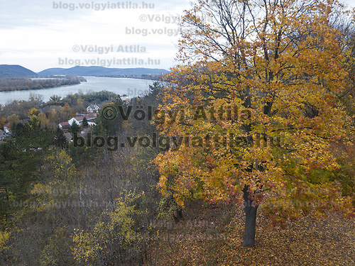 Aerial autumn view of river Danube in Zebegeny (about 70 kilometres north of capital city Budapest), Hungary on Oct. 28, 2017. ATTILA VOLGYI