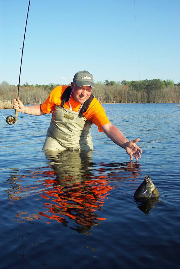 Fly fisherman landing trophy bluegill in Richmond Mill Lake near Laurel Hill, North Carolina